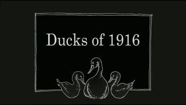Ducks of 1916